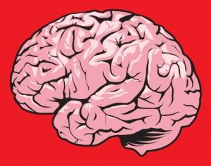 recurso-cerebro-red